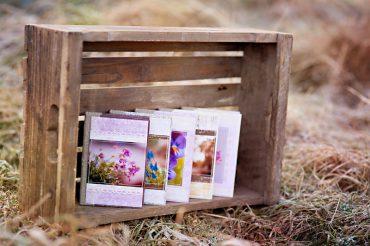 Kalendarze. Czyli rzecz o miłości do papieru.
