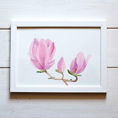 ilustracja akwarela a5 kwiaty magnolii