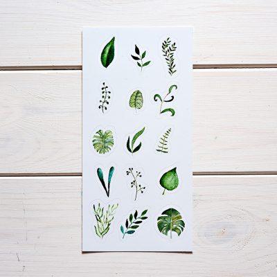 naklejki botaniczne liscie 15szt