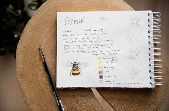 Malowany pamiętnik – podsumowanie projektu Lipcownik 2021